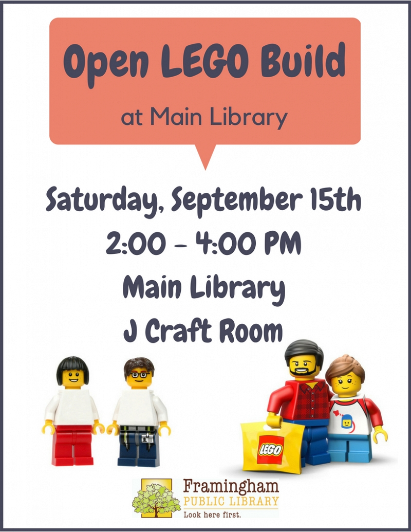 Open LEGO at Main Library thumbnail Photo