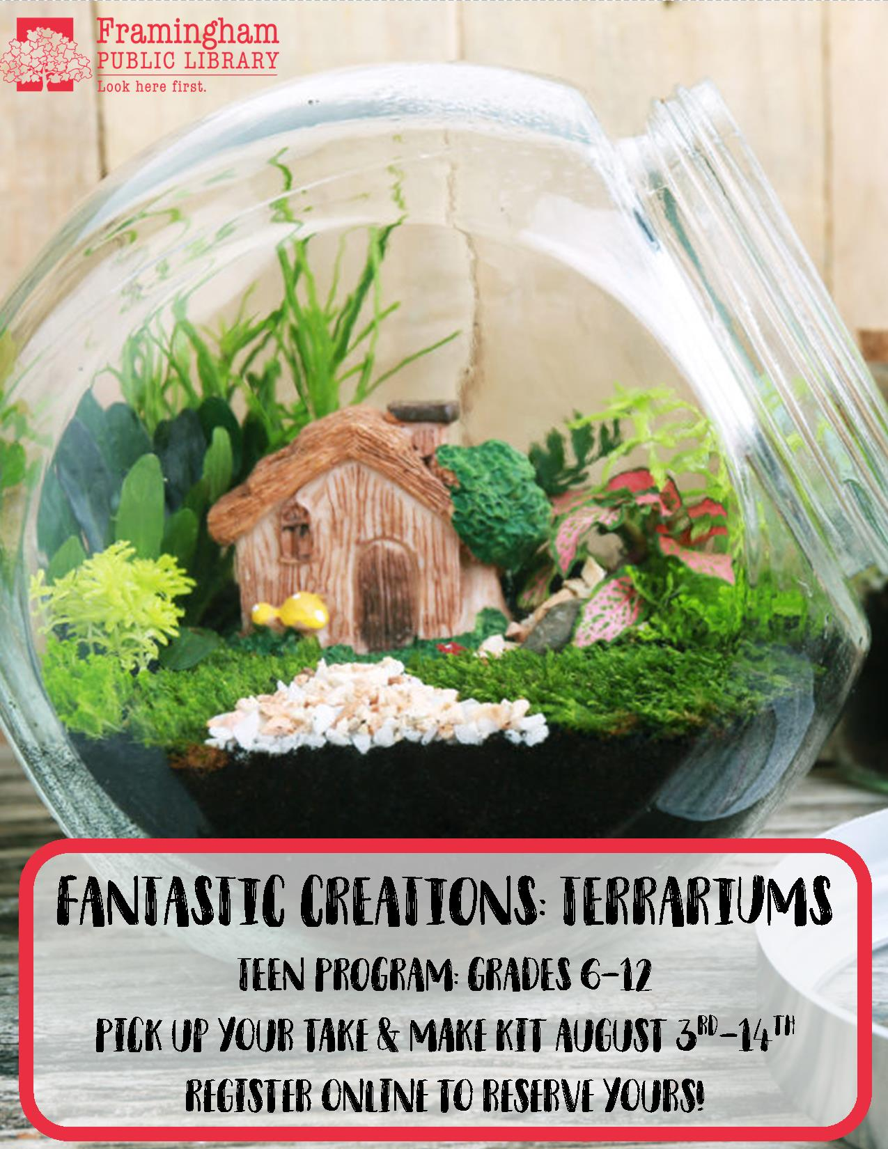 Fantastic Creations Take & Make Craft: Terrariums thumbnail Photo