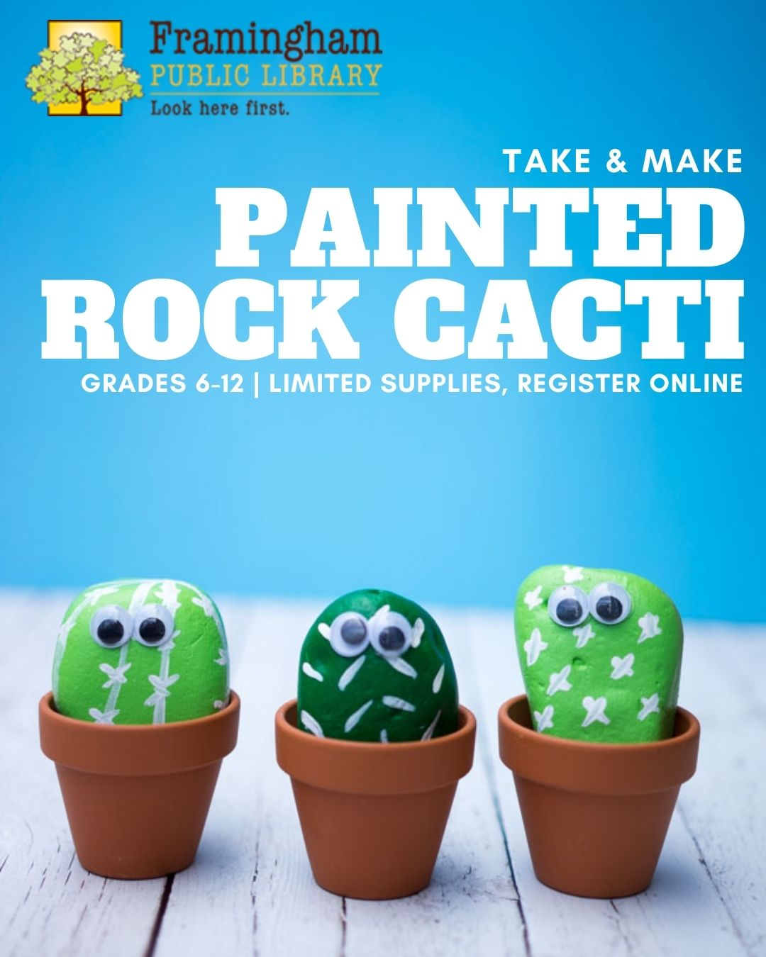 Take & Make Craft: Rock Cacti thumbnail Photo