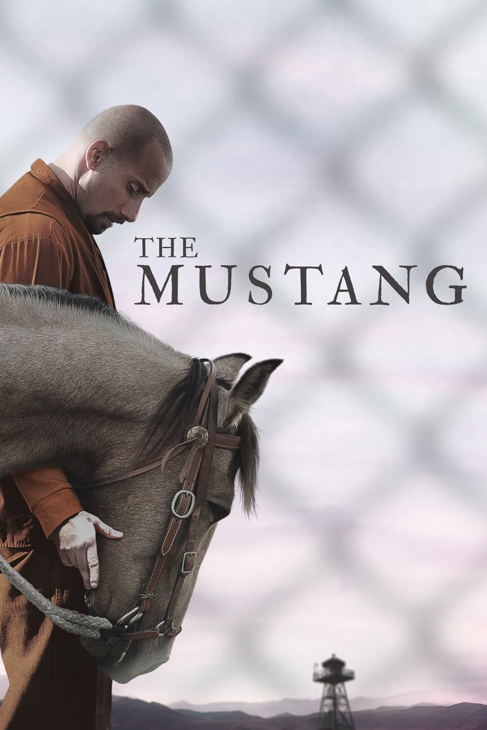 Friday Night Flick: The Mustang thumbnail Photo