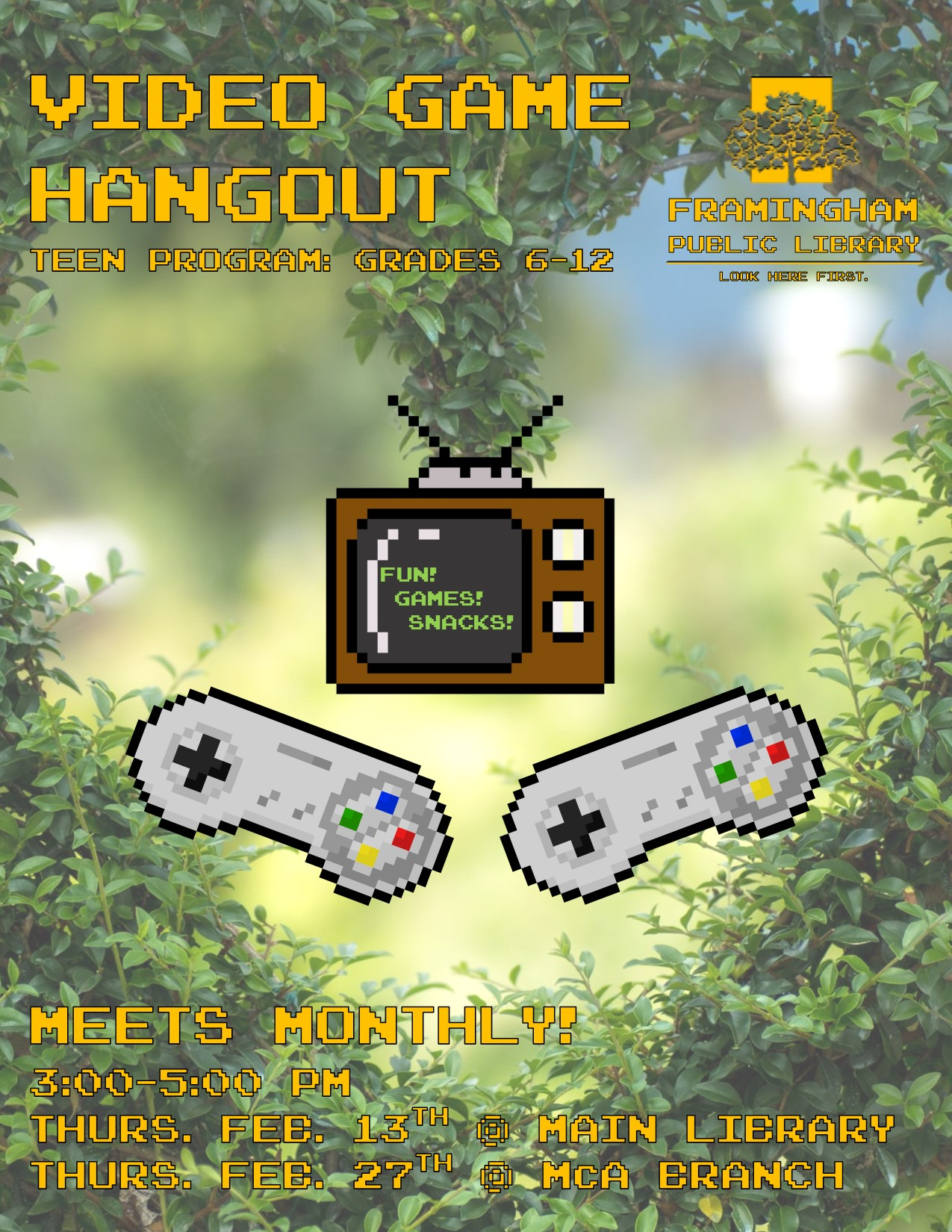 Video Game Hangout (Main Library) thumbnail Photo