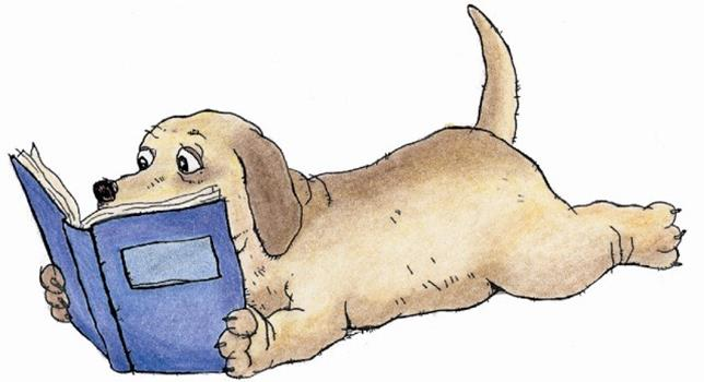 Book Buddy: Reading to Dogs @ McAuliffe thumbnail Photo