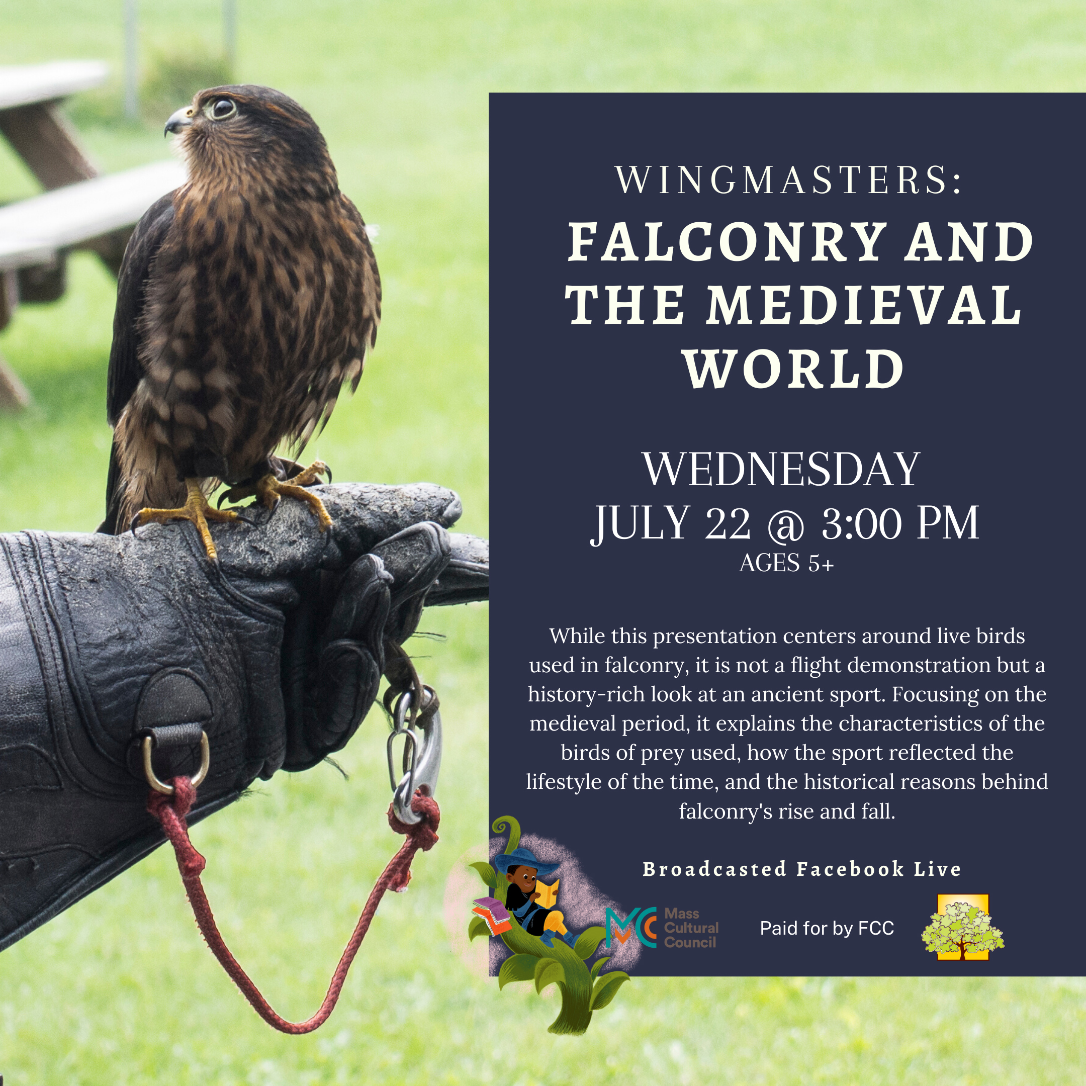 Wingmasters: Falconry and the Medieval World thumbnail Photo